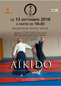 Démo initiation Aikiryu 13092016