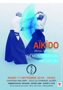 Affiche démonstration initiation 11/09/2018